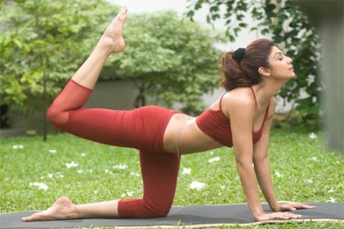 Shilpa Shetty to flaunt yoga moves at Dubai festival
