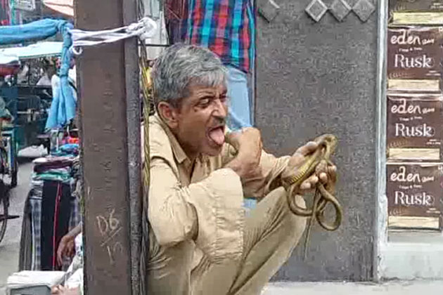 'Vish Purush' or stuntman, this man uses snake poison as drugs