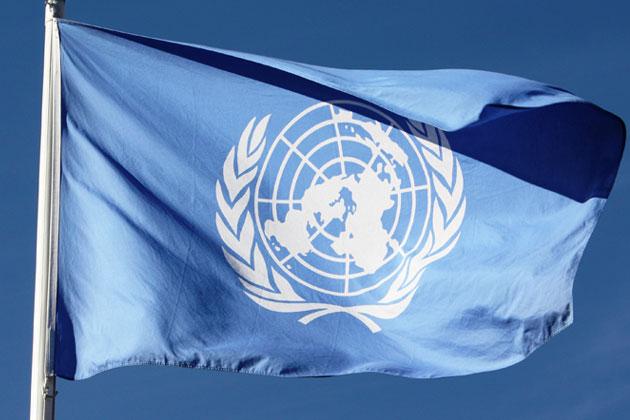 Tokeo la picha la UN FLAG
