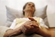 Try mediterranean diet to cut risk of Alzheimer's