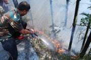 Uttarakhand forest fire: Combined efforts from state and Centre bring fires...