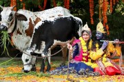 Janmashtami: India celebrates Lord Krishna's birth